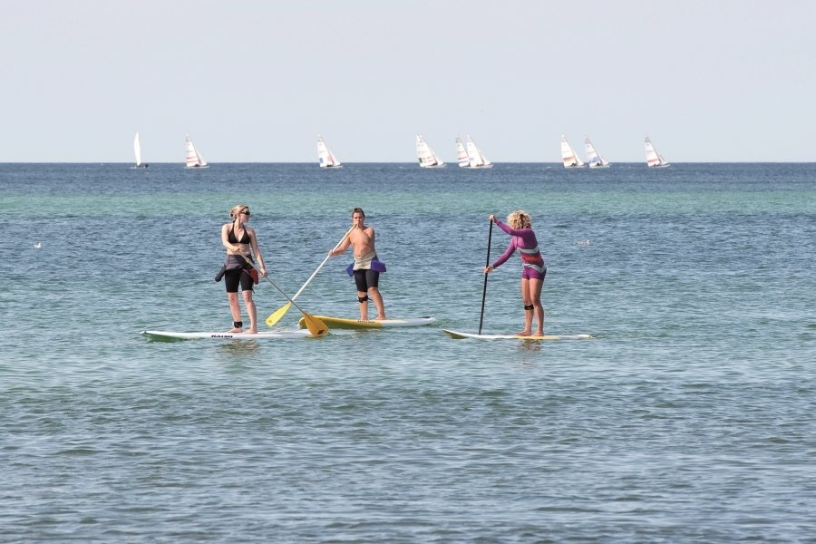 Stand Up Paddling (2 Std.)